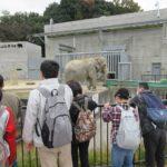 岡崎東公園に行ってきました!
